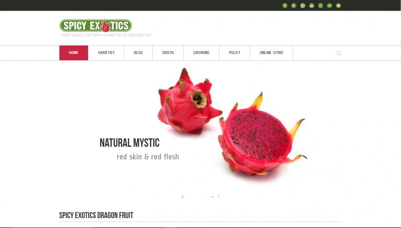 spicy-exotics-website-design